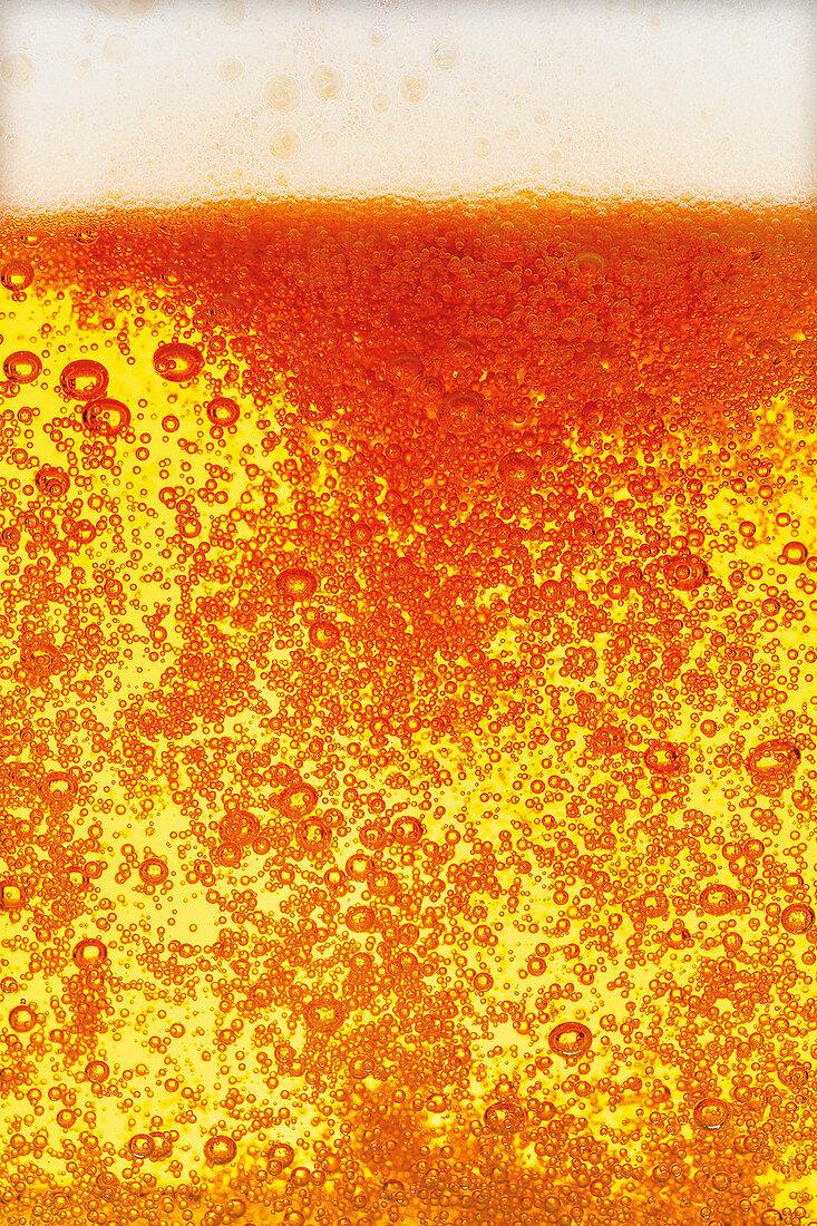 'Single Hop Imperial Pils' beer (full frame)