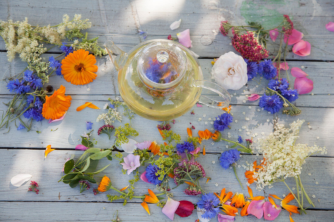 Blütentee und verschiedene frische Heilblüten