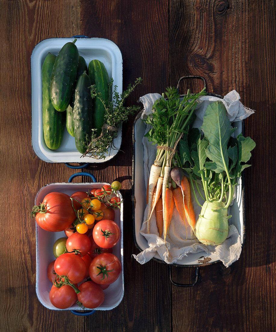 Fresh organic vegatables
