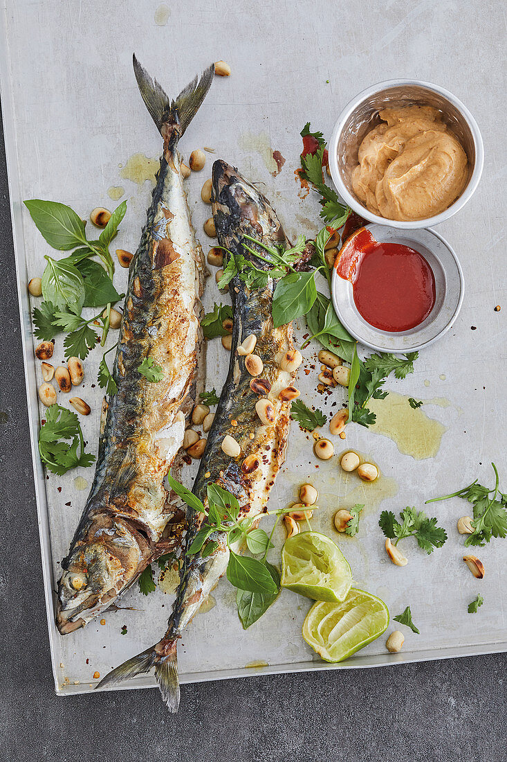 Grilled mackerel with a herb coating and peanut sauce
