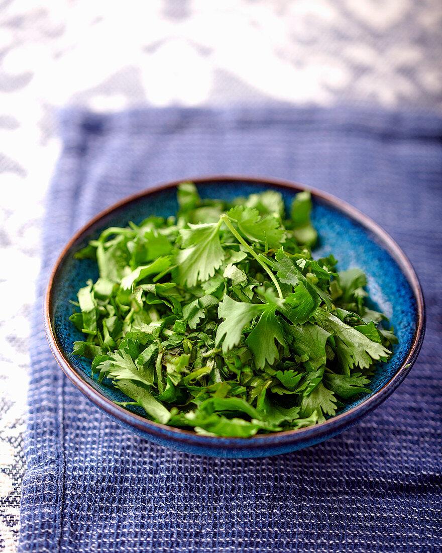 Fresh parsley in dish
