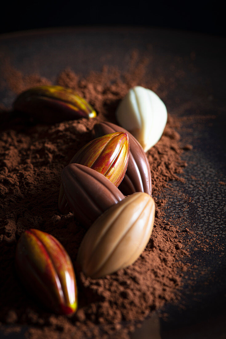 Handmade chocolates in the shape of cocoa pods on cocoa powder