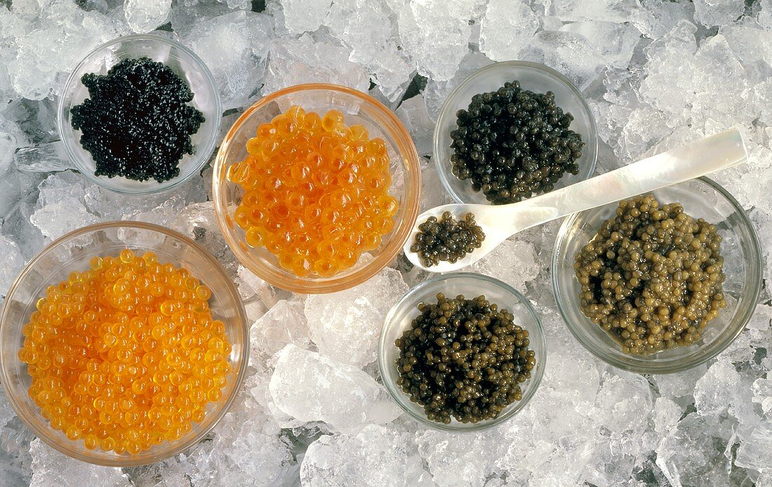 Many Assorted Types of Caviar