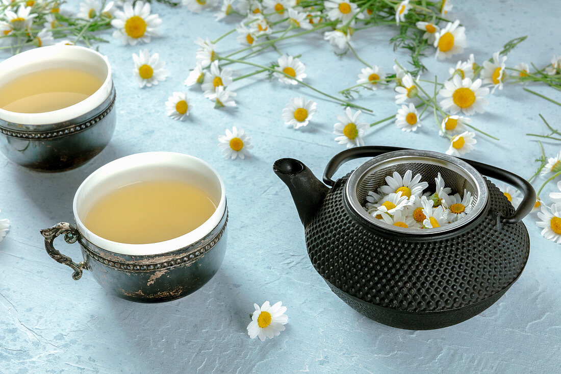 Pot of chamomile tea served on rustic mug with fresh flowers on blue background