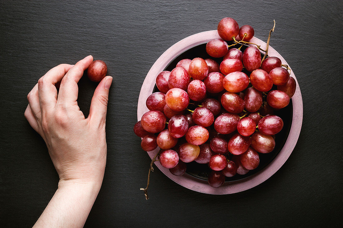 Hand holding red grape near bowl of ripe red grapes placed on black surface