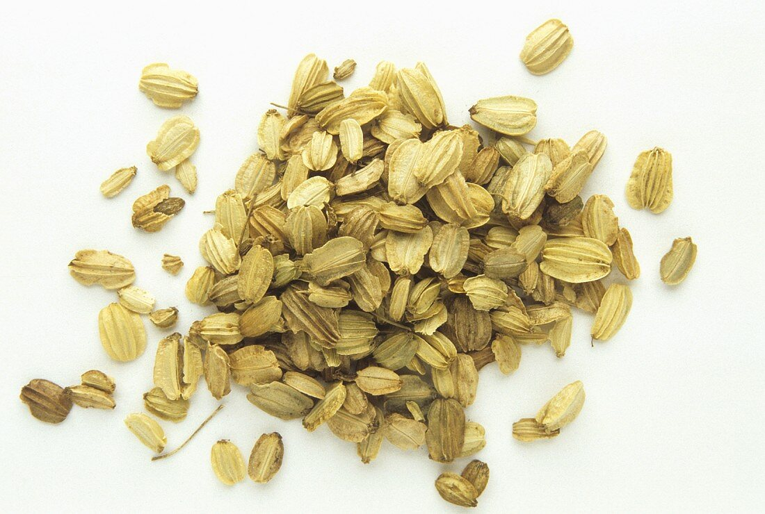 Angelica seeds (or angelica fruits, Angelica sinensis)