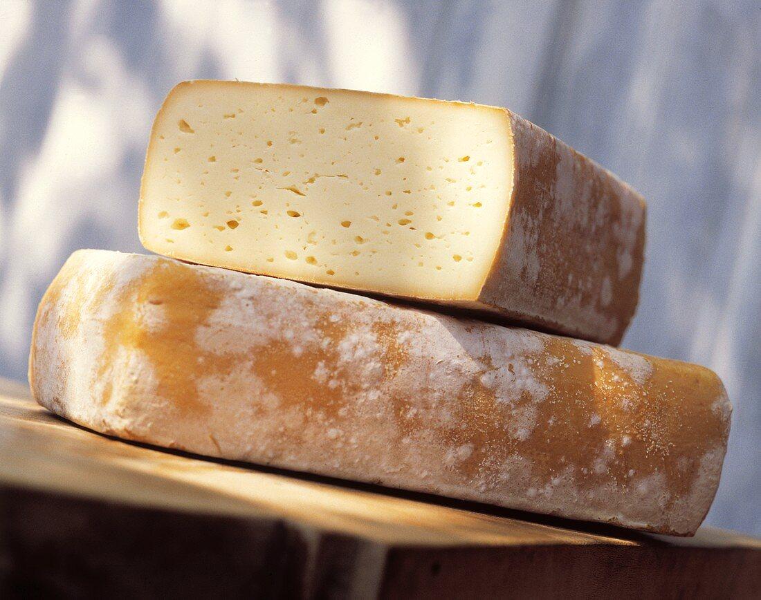Cheese Wheel Still Life