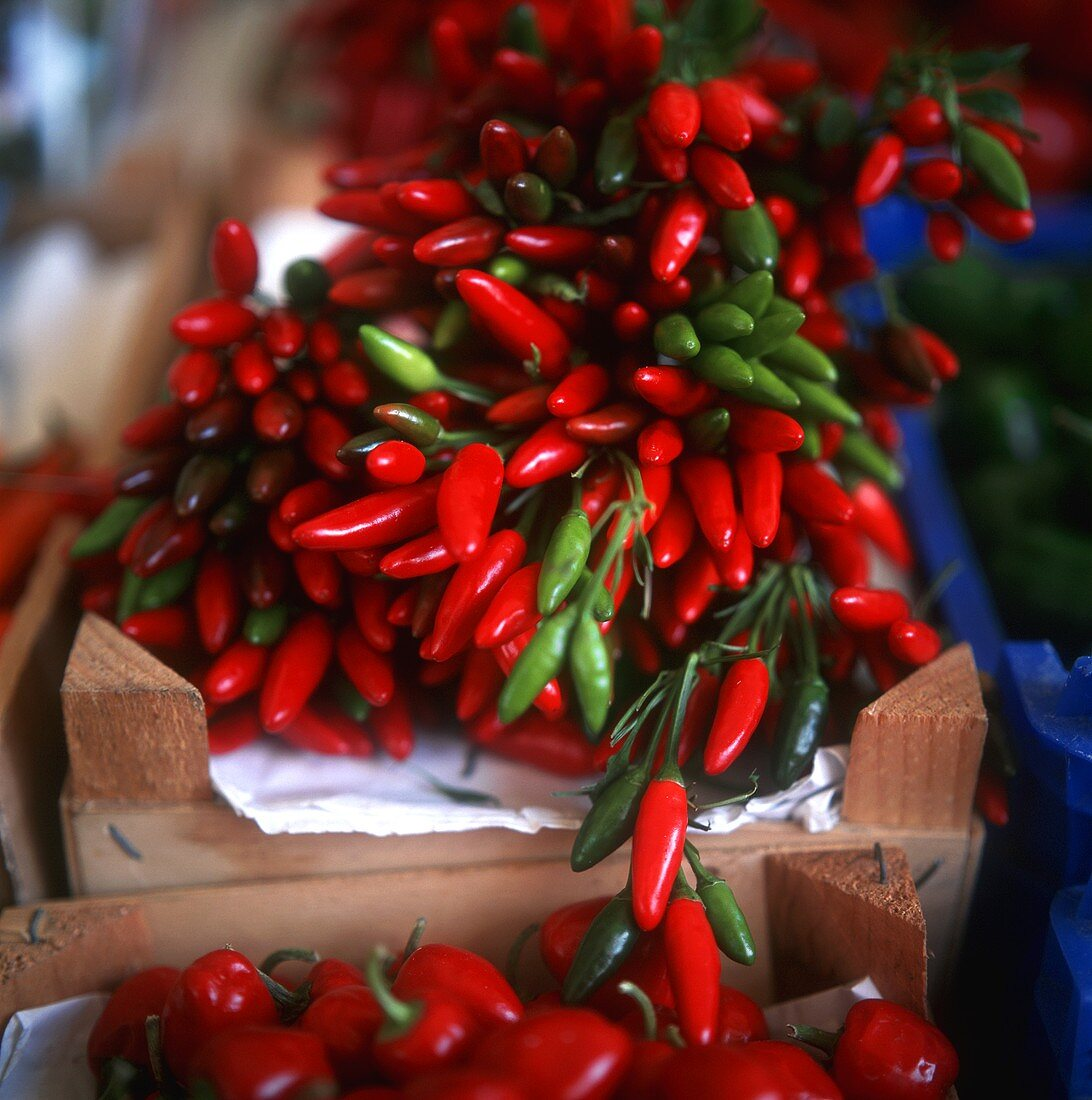 Red and green chilis in crates at the market