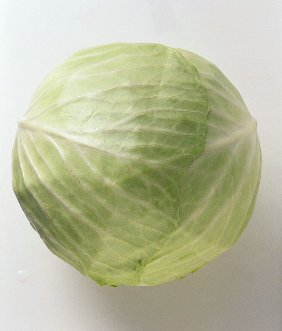 A white cabbage
