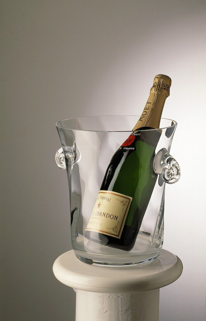 Champagne bottle (Moet & Chandon) in glass bucket