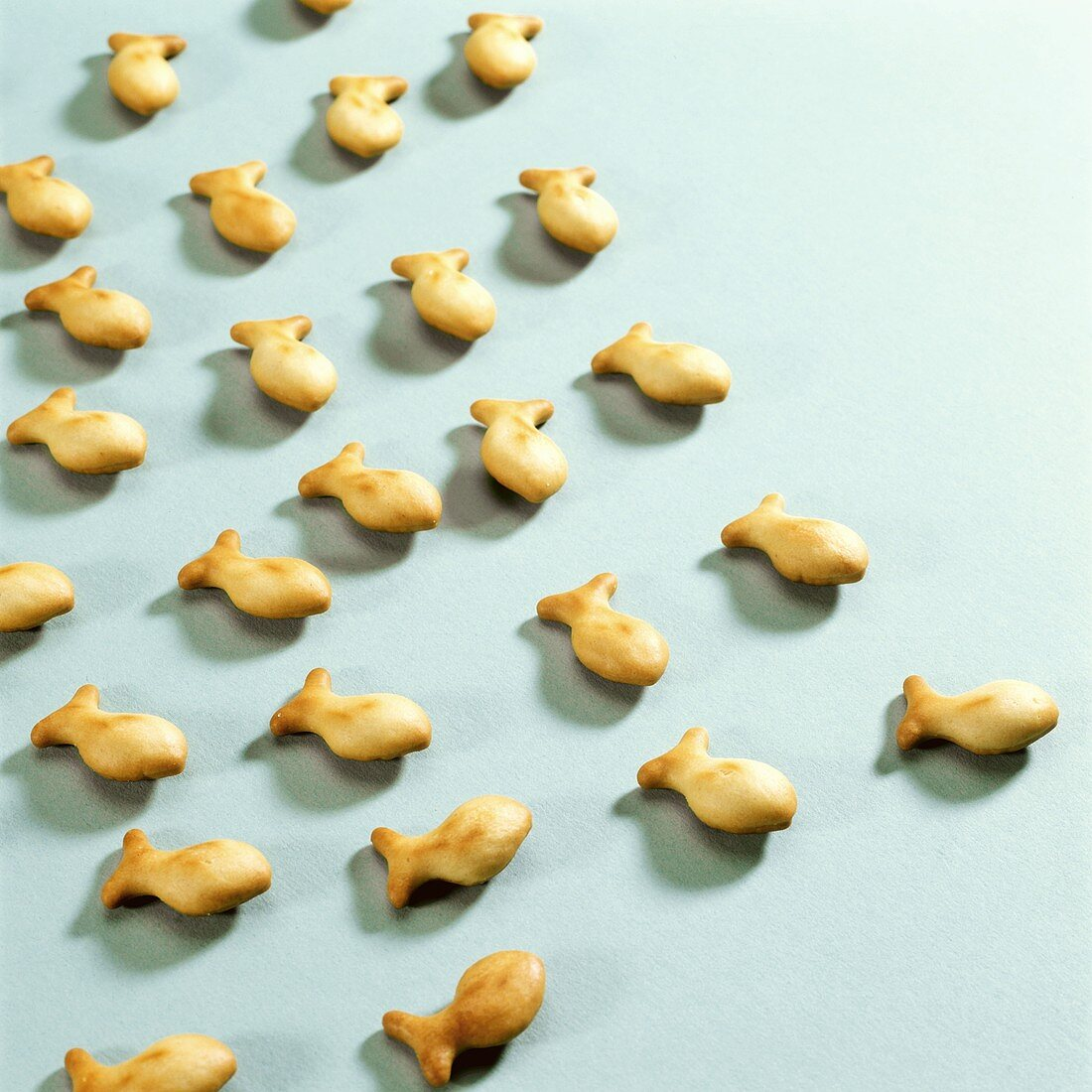 Nibbles; baked Fischlis on turquoise background