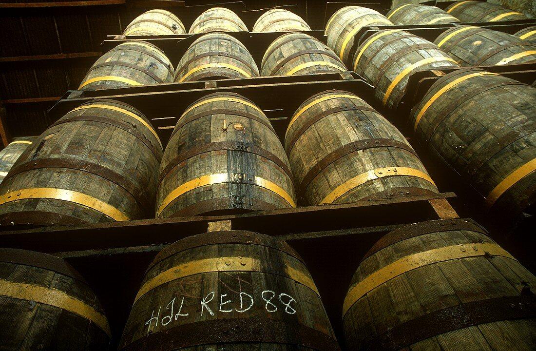 Rum barrels; West Indies Rum Refinery Brighton, Barbados