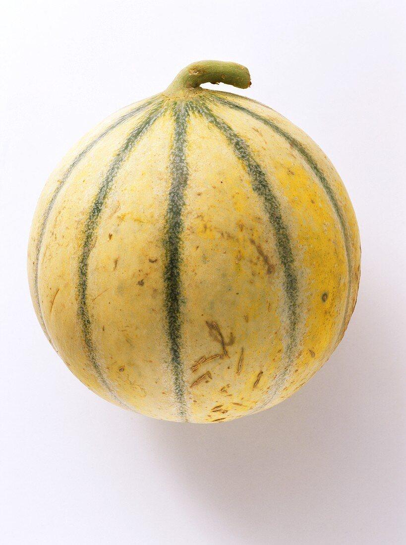 A Fresh Charentais Melon