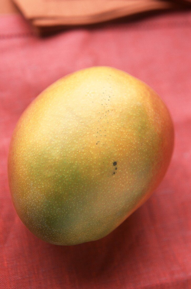 A mango on red background