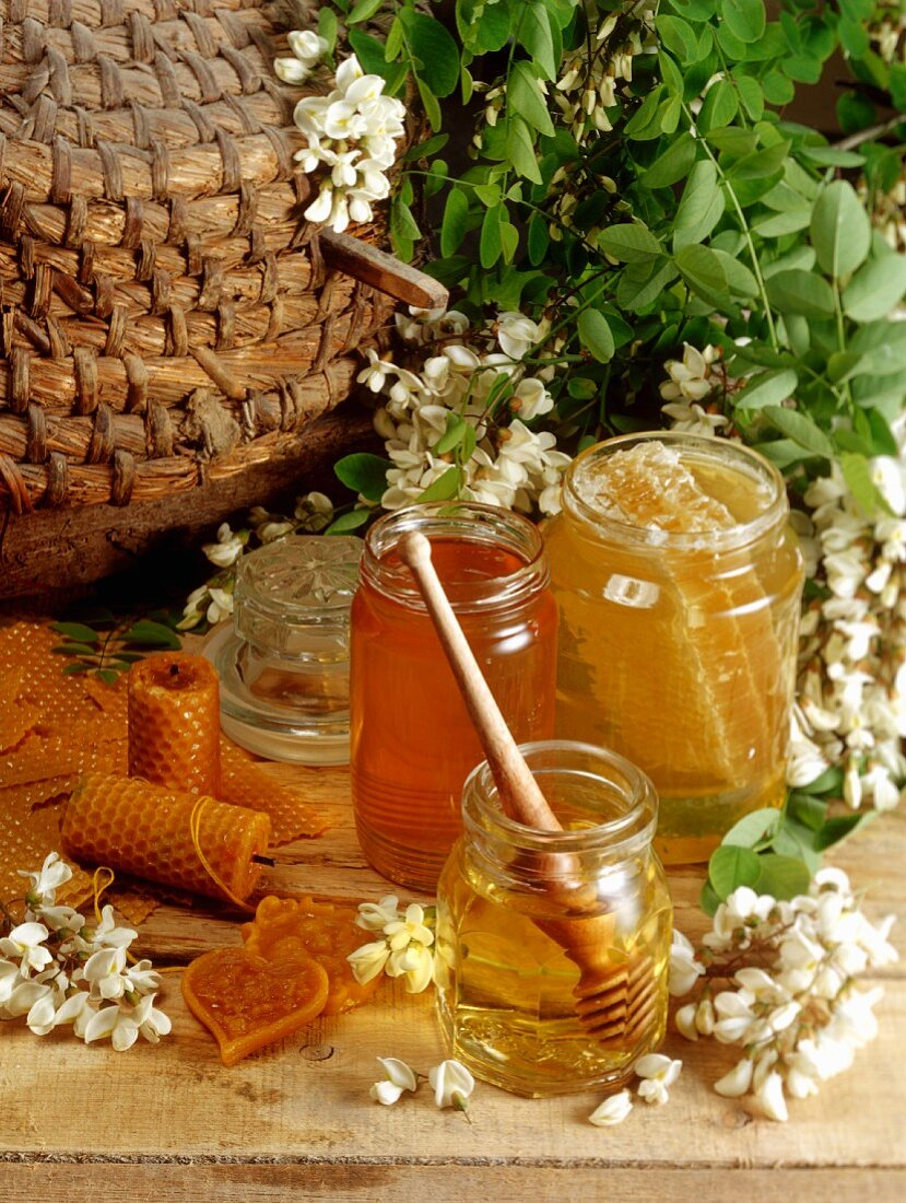 Still life with honey and acacia blossom