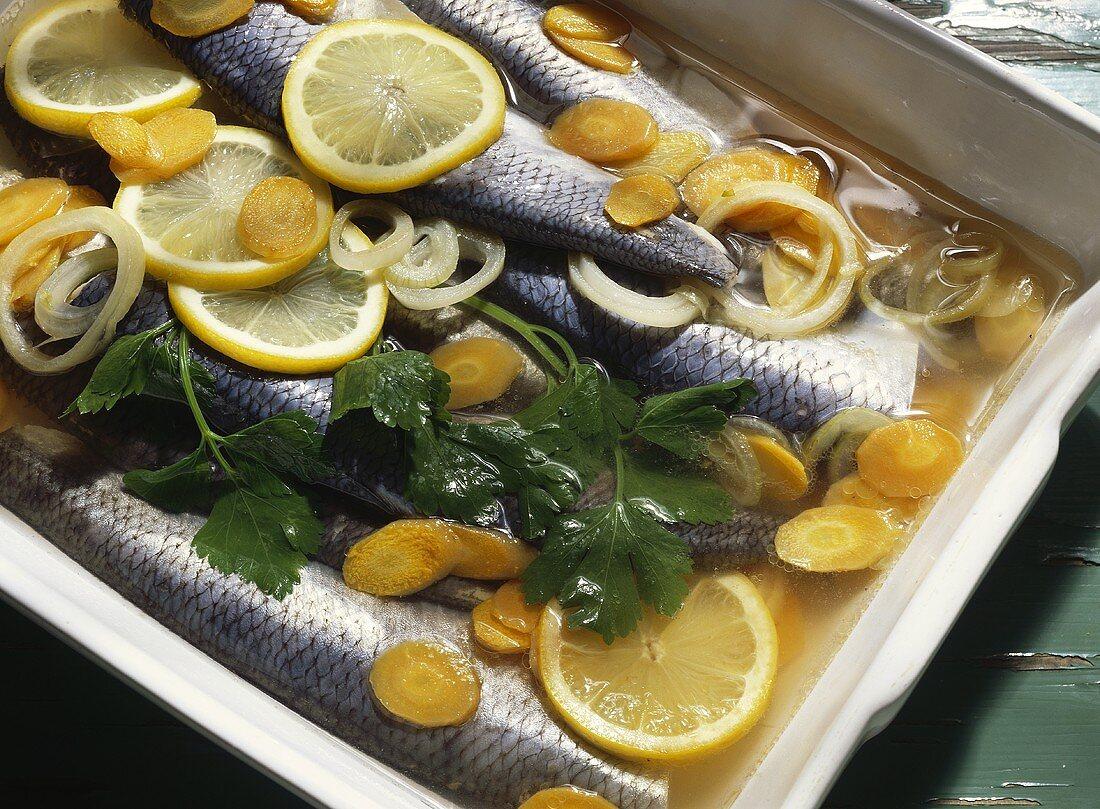 Marinated Herring WITH Orange and Onion