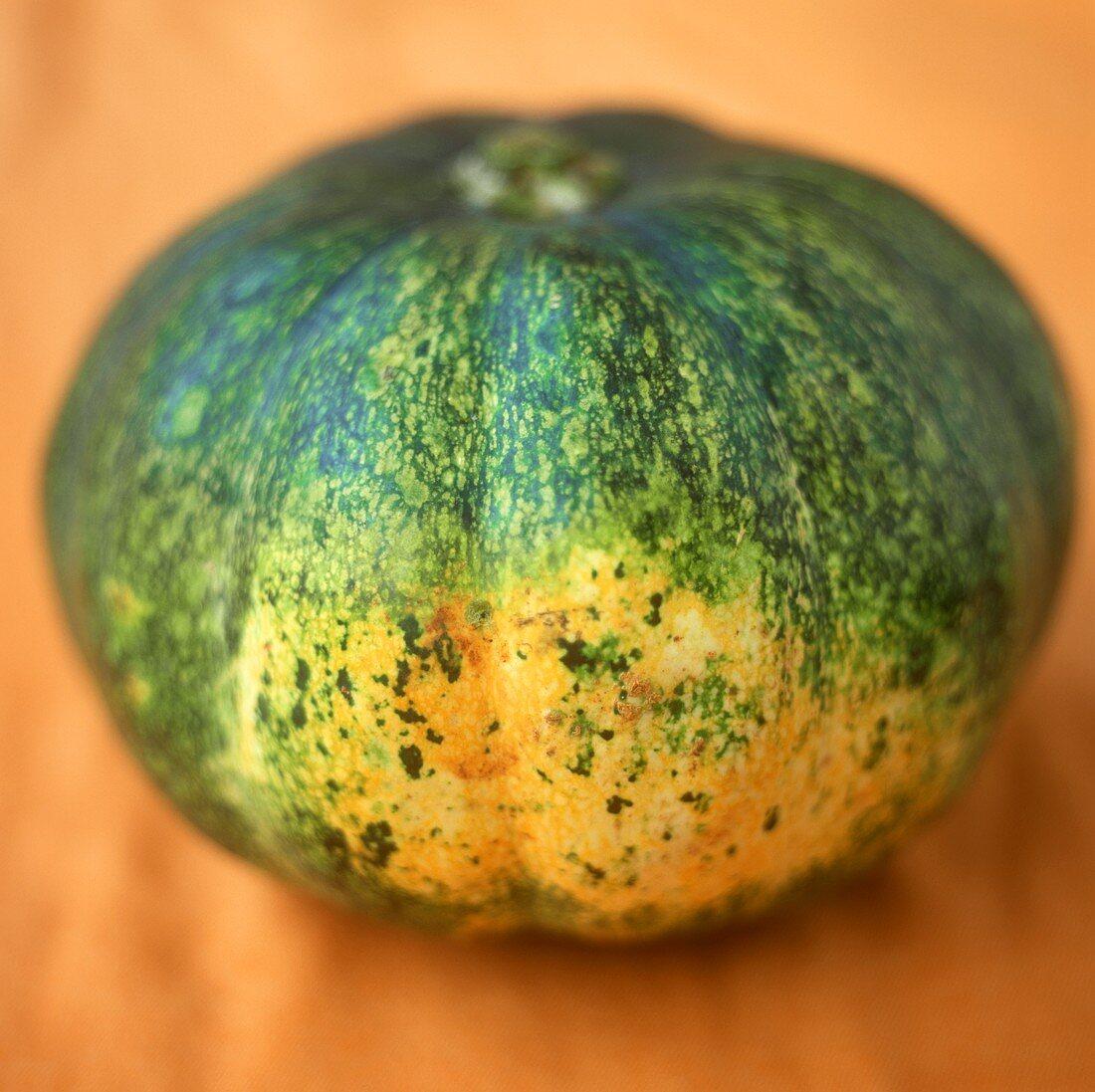 Yellow-green pumpkin