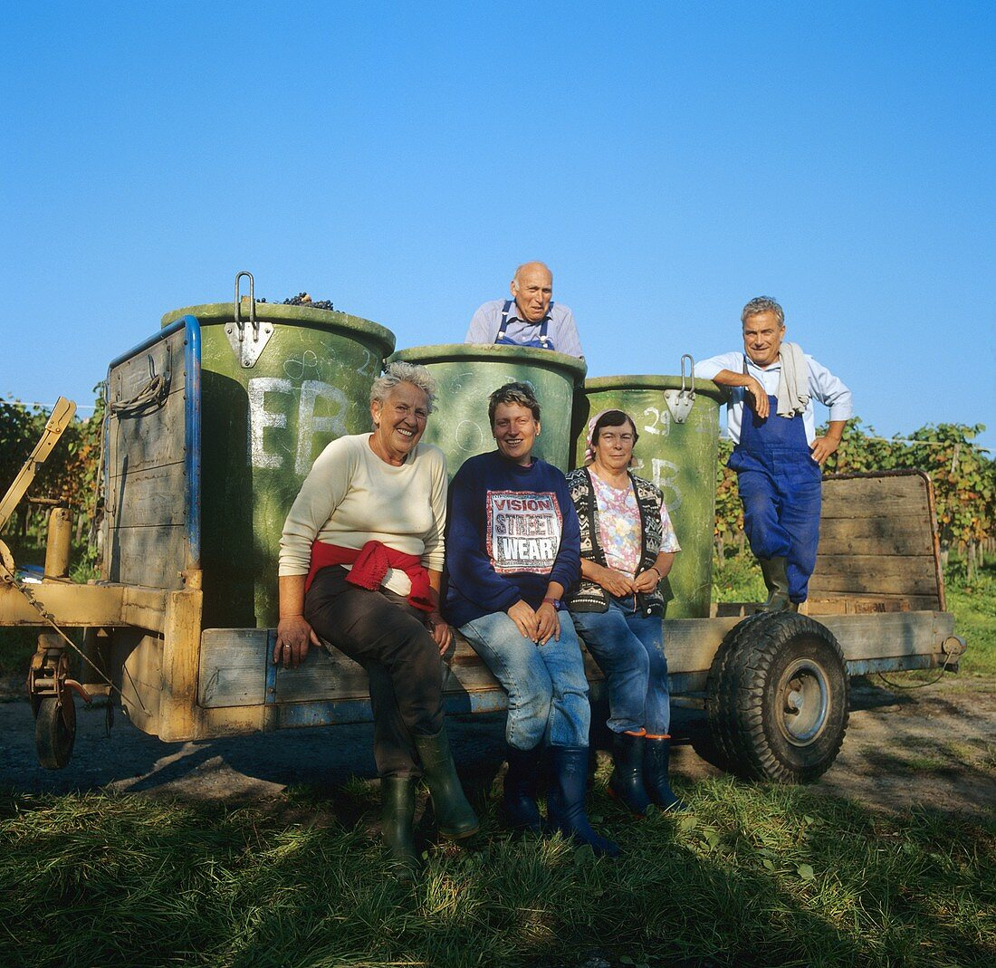 Group photo of grape pickers after vintage, Hagnau, Germany