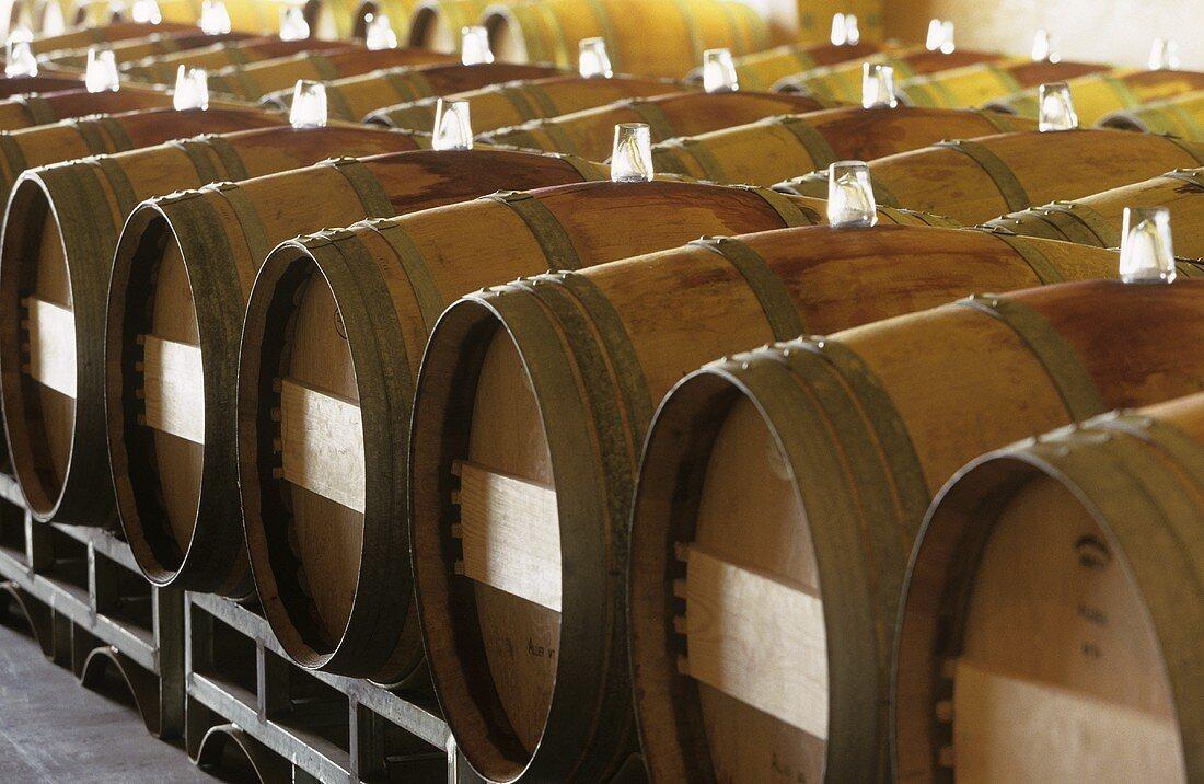 Almaviva wine stored in barrels in large Chai, Maipo, Chile