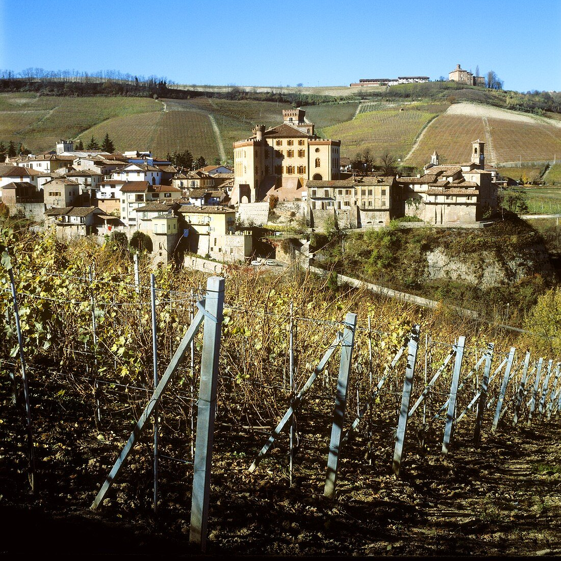 The town of Barolo with castle in Piedmont, Italy