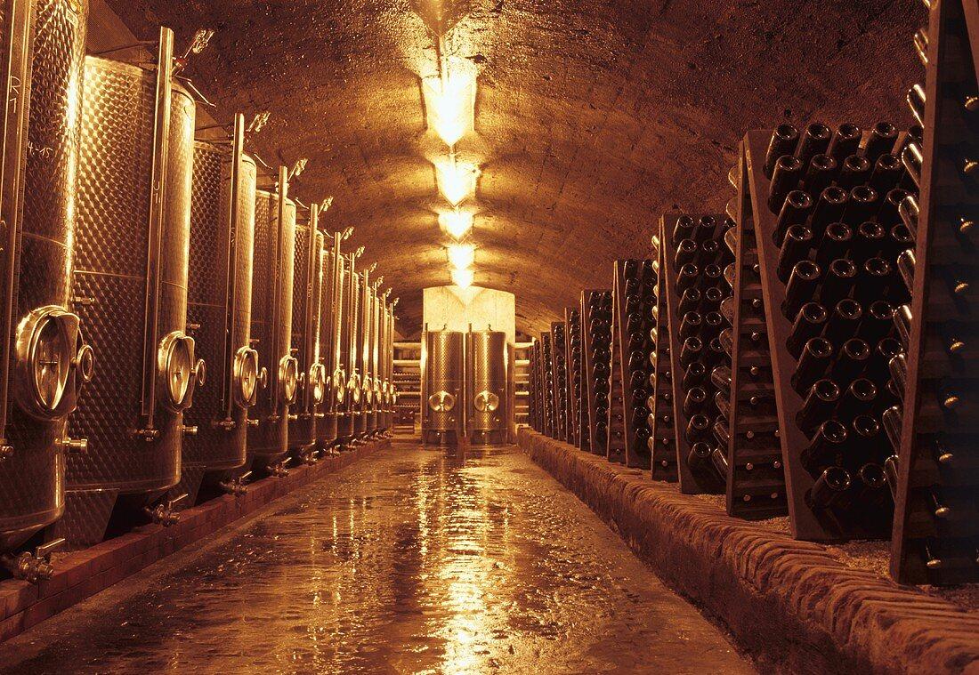 Wine cellar on Heymann-Löwenstein Estate, Winningen, Mosel