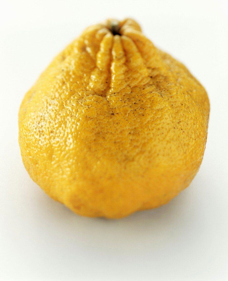 An ugli fruit