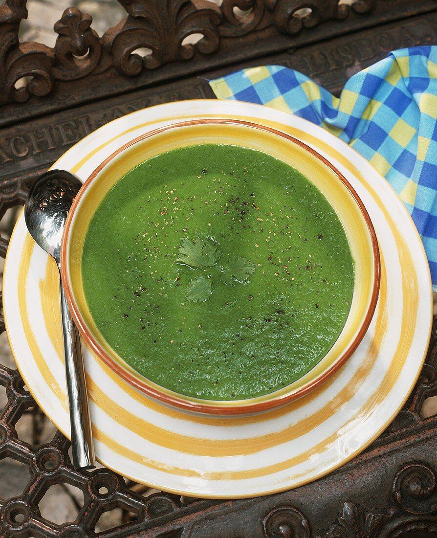 Portuguese coriander cream soup (Acorda)