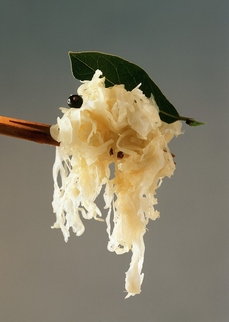 Sauerkraut with juniper berry and bay leaf on wooden fork