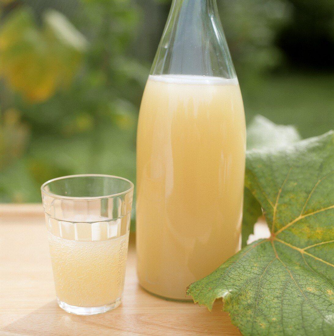 Federweisser (young wine) in bottle & glass on garden table