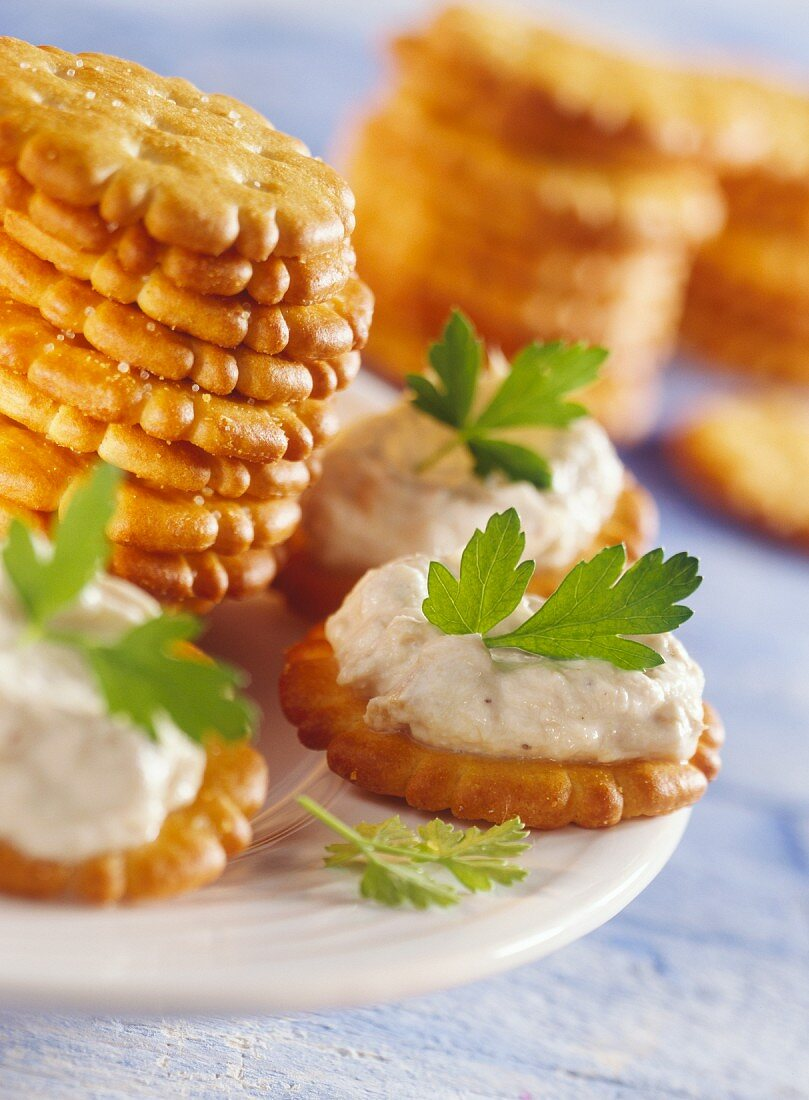 Cracker with tuna and cheese spread
