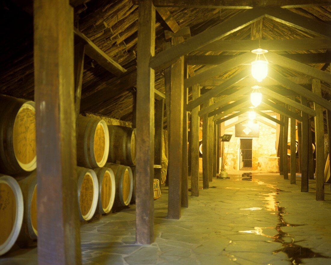 Wintertight wine cellar at Reynella Winery, McLaren Vale
