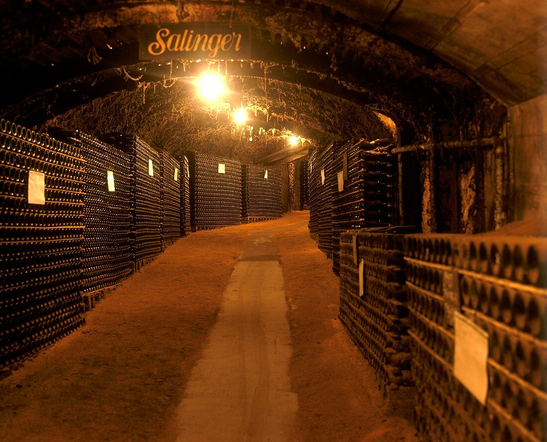 Wine cellar at Great Western, Victoria, Australia