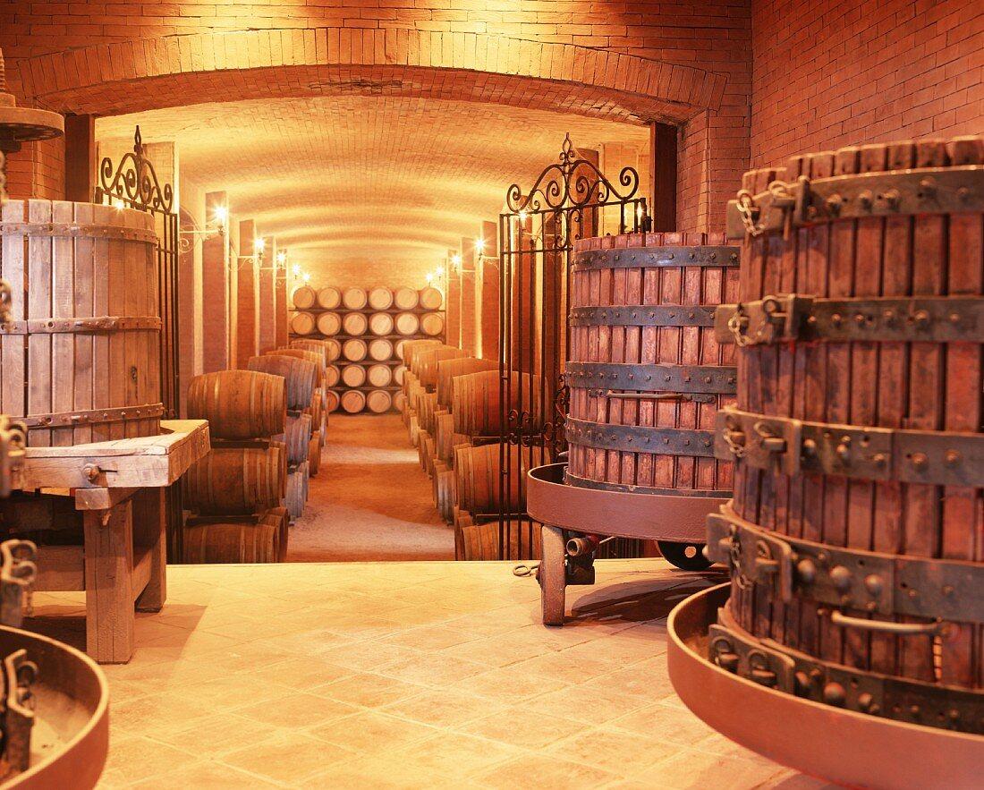 Wine cellar of the Tarapaca Winery, Maipo Valley, Chile
