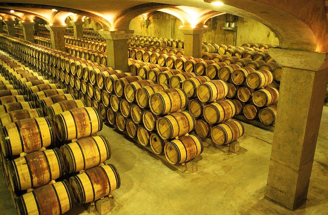 Barrique Wine Cellar; France