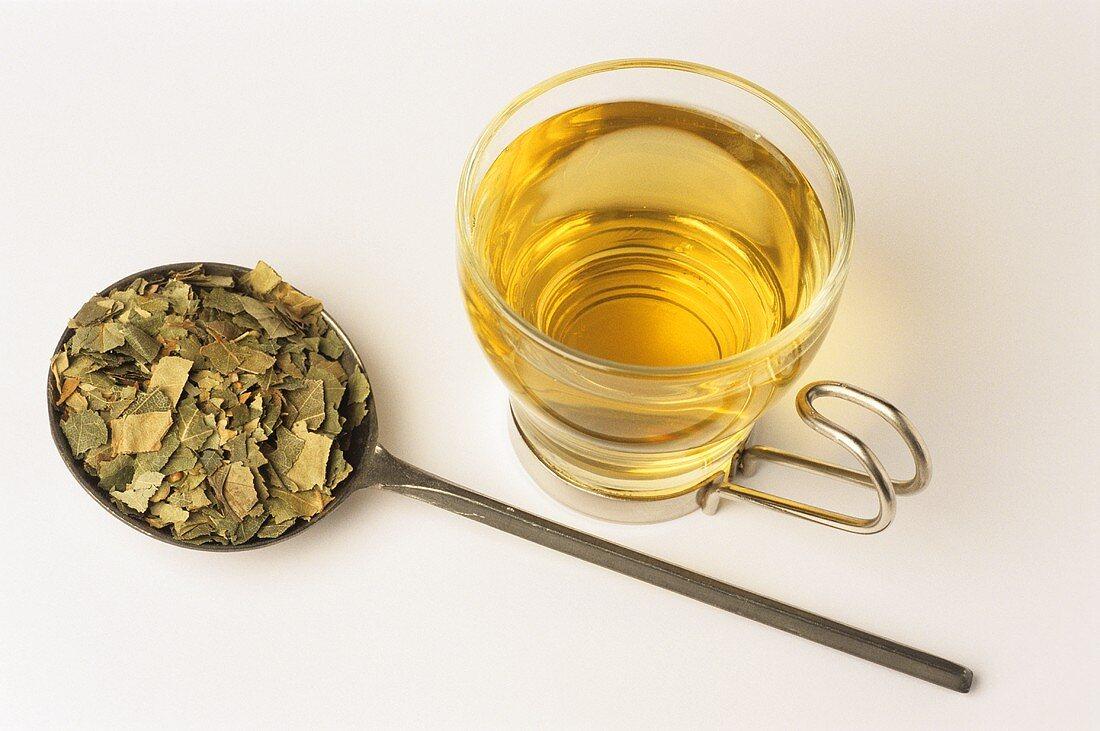 Birch leaf tea and dried leaves (Betula pendula)