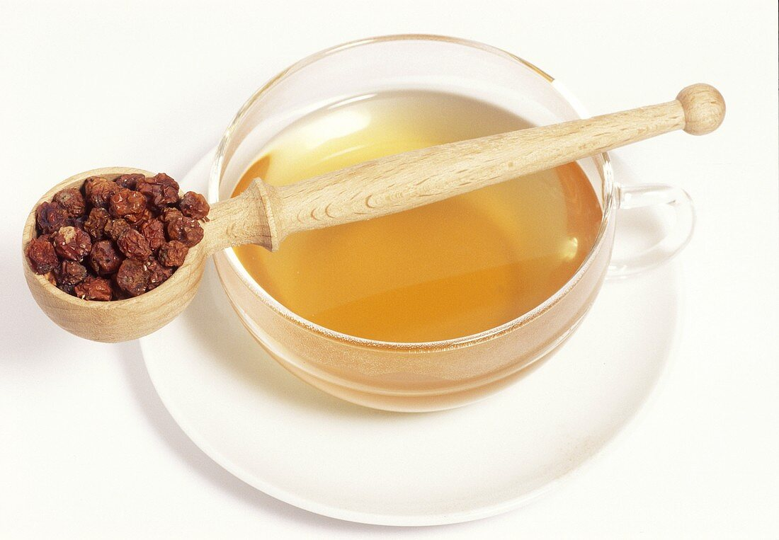 Rowan berry tea and dried berries