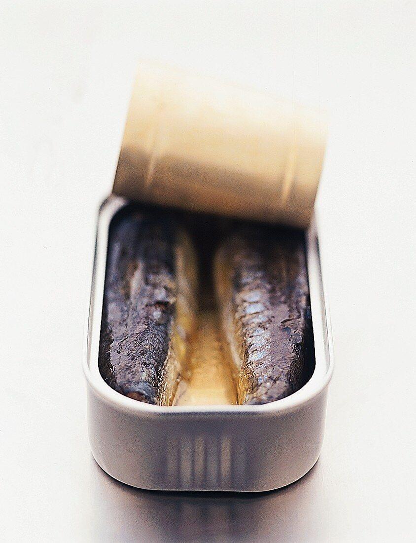 Sardines in opened tin