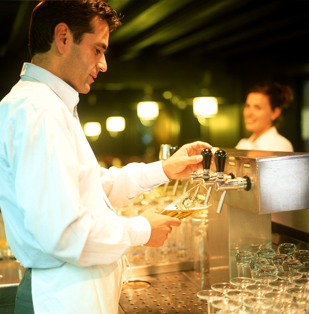 Barman pulling beer into a Pils glass