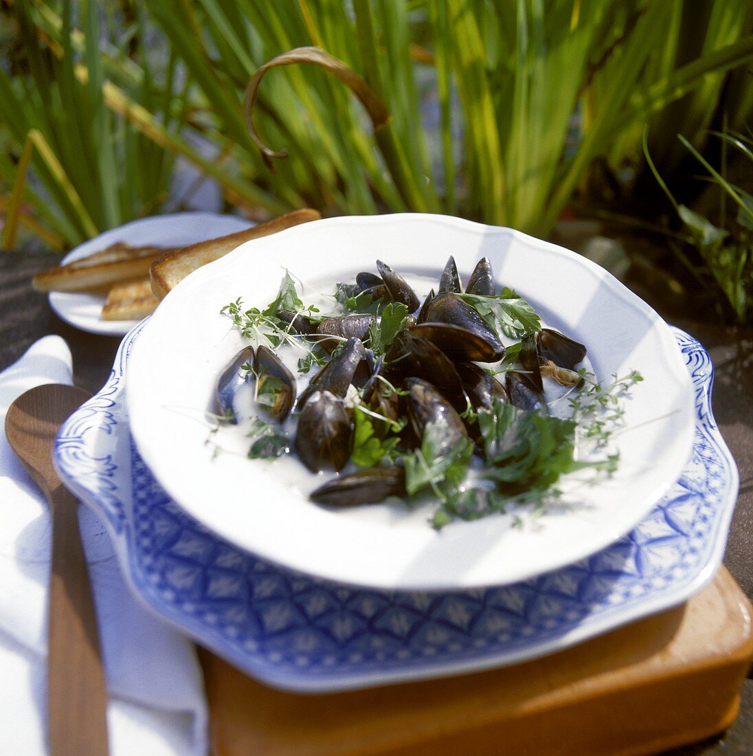 Mussels in herb and white wine sauce