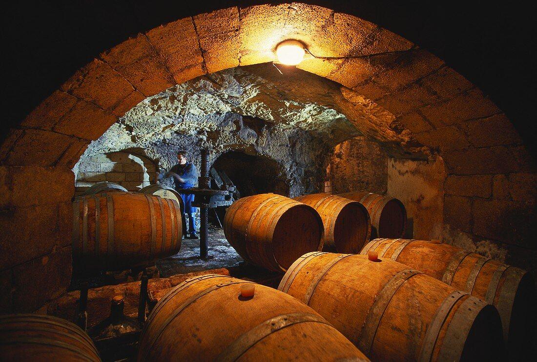 Wine cellar in Domaine des Roches Neuves, Saumur-Champigny