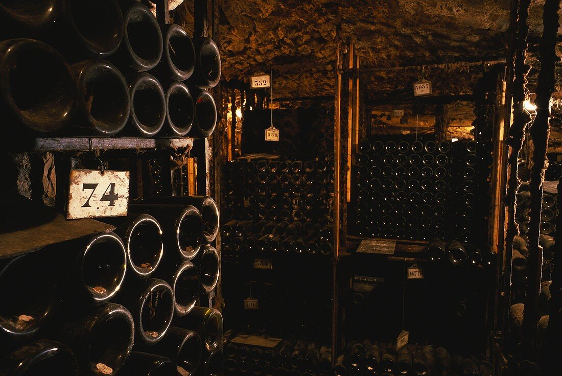 Wine cellar on Bouchard Pere et Fils Estate, Beaune, Burgundy
