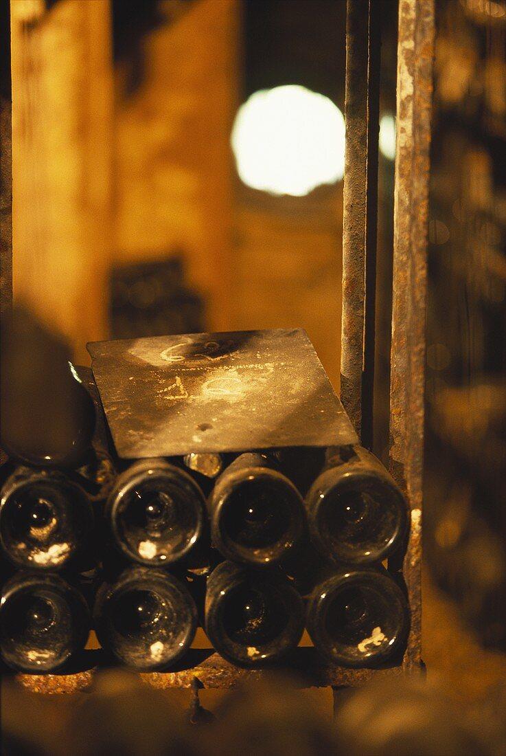 Wine stored in wine cellar of Bouchard Pere et Fils, Beaune