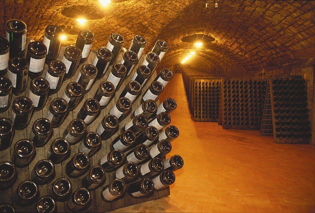 Pupitres in Ca' del Bosco wine cellar, Lombardy, Italy