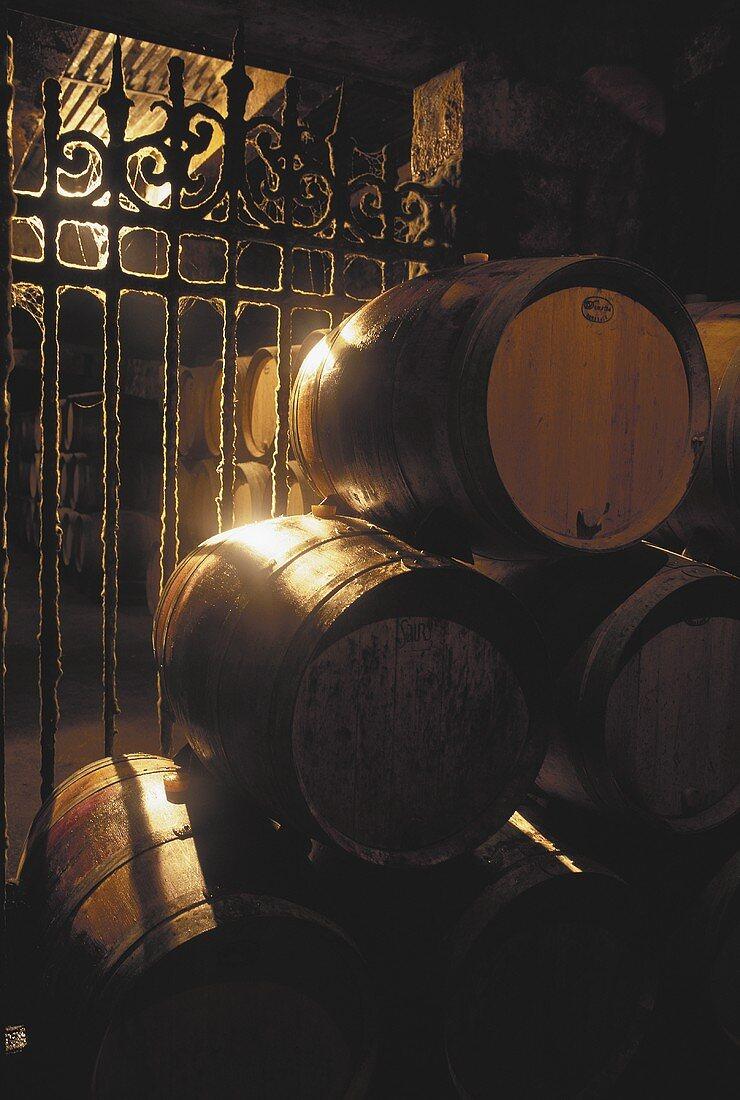 Barrique barrels in a cellar