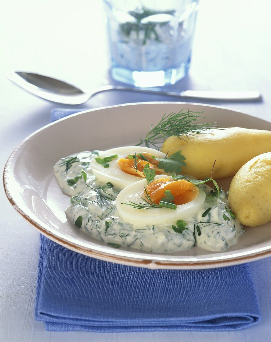 Medium soft eggs on herb yoghurt sauce with boiled potatoes