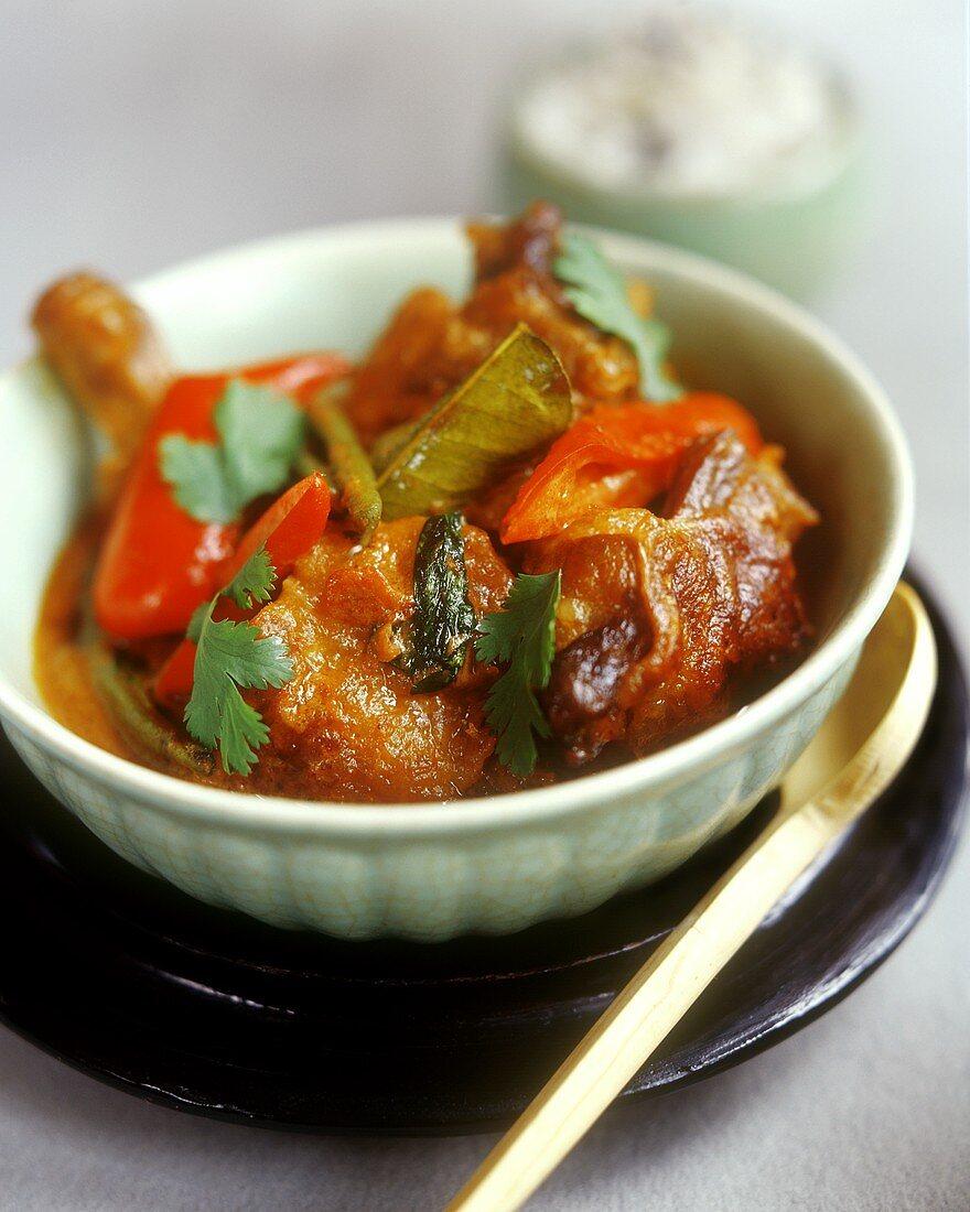 Asian duck and pepper ragout