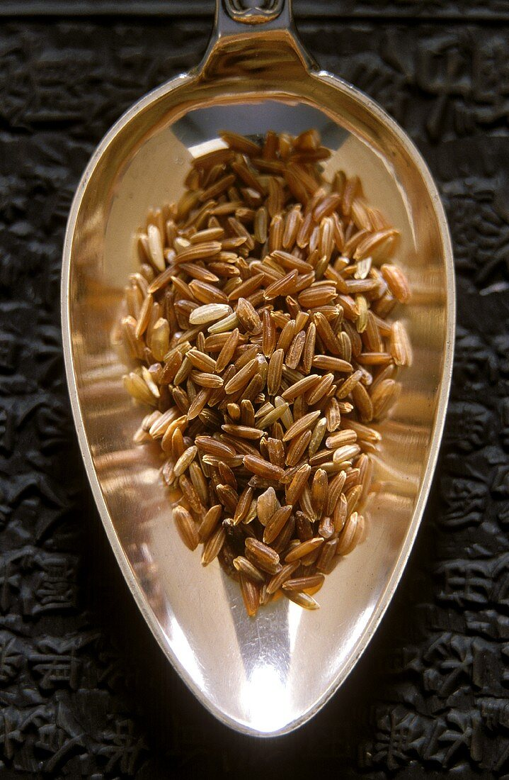 Raw, unpolished Camargue long-grain rice on silver spoon