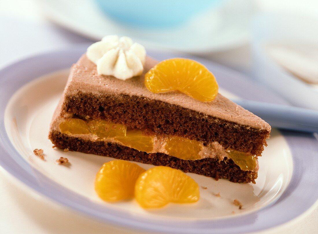 Piece of chocolate cream gateau with mandarin oranges