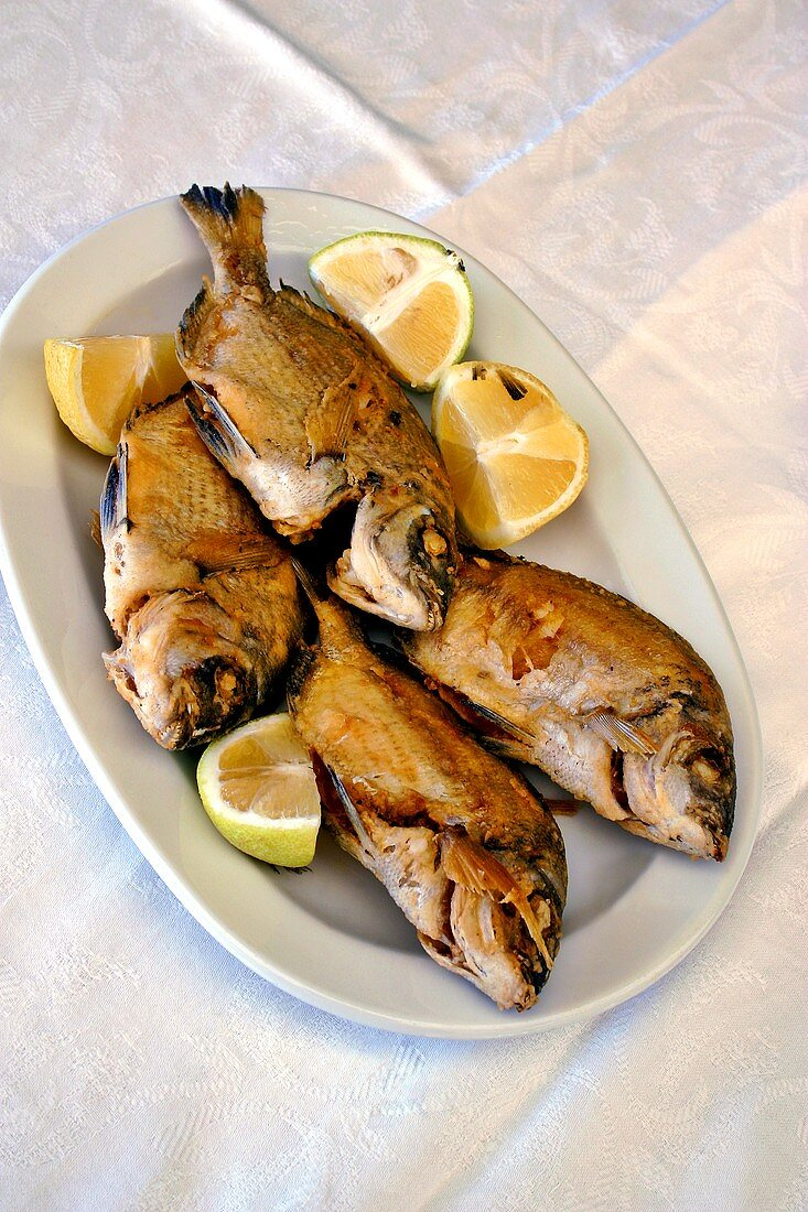 Four barbecued red mullet (sargos) on a platter (Crete)