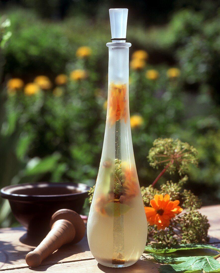 'Magenschmeichler' herbal liqueur